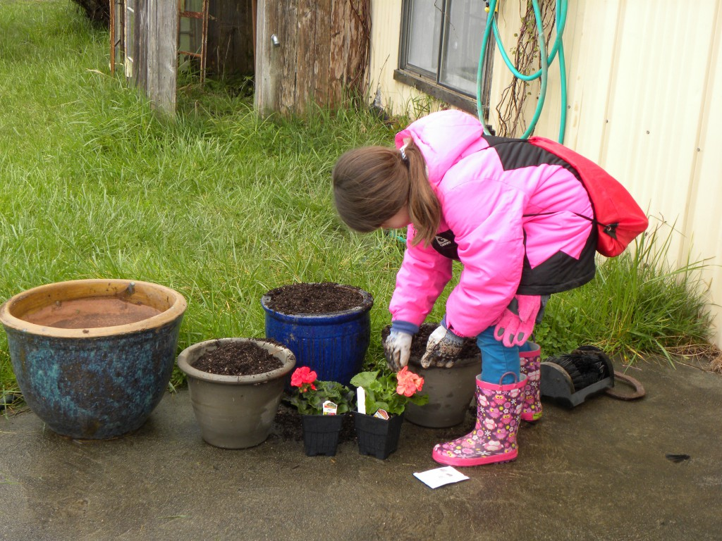 Girl Scouts at Work March 2015 (6)